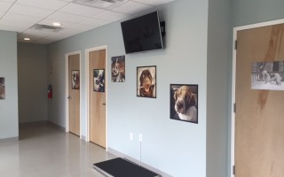The scale in the waiting area and doors leading to the back of the clinic and exam rooms