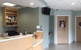 The reception desk and doors leading to two of the exam rooms