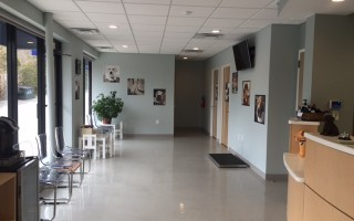 The waiting area in the lobby of the clinic