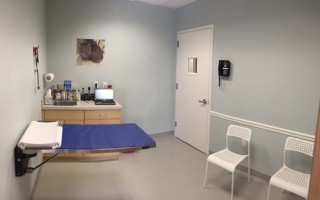 The cat exam room