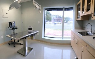 The surgical room of the clinic