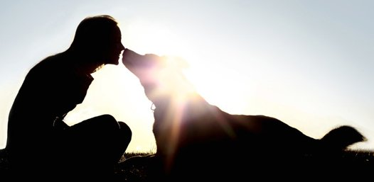 The outlines of a woman and her dog touching noses with the sun behind them